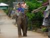 karen-ruammit-village-elephants-11