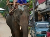 karen-ruammit-village-elephants-12