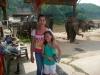 karen-ruammit-village-elephants-2