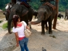 karen-ruammit-village-elephants-3