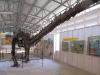 chiang-muan-dinosaur-park-006