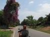 route-1091-nan-chiang-muan-001