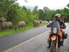 route-1234-kiu-sataa-doi-mae-salong-002
