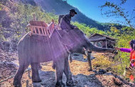Myanmar - New Elephant Camp Opens