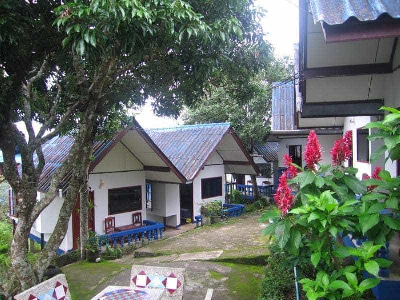 Shin Sane Bungalows - Doi Mae Salong