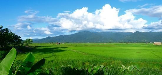 Thoeng - Ing River plains - Thoeng District, Chiang Rai